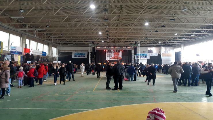Edzőtábor - Fonyód Ifjúsági Tábor - Sportcsarnok 2