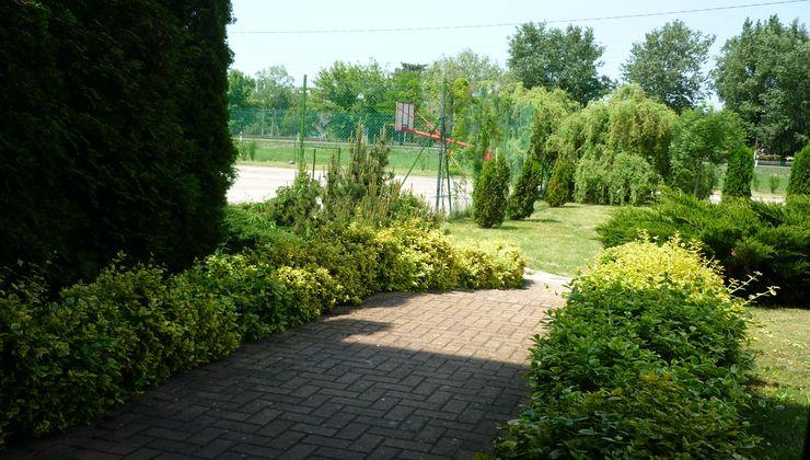 Edzőtábor - Siófok Ifjúsági Hotel - Tábor - kert 2