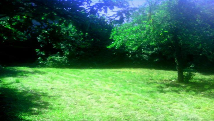 Edzőtábor - Siófok Üdülő és Táborhelyszín - udvar