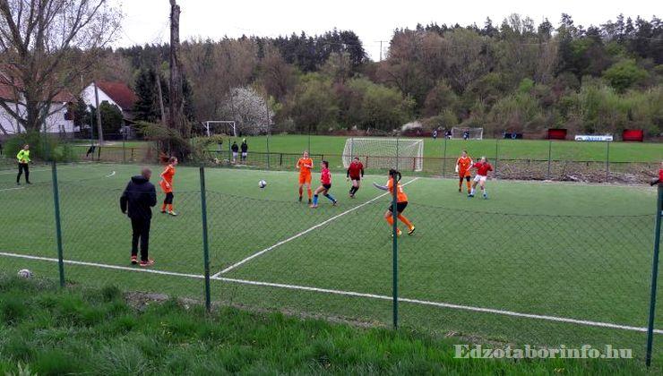 Edzőtábor, Szetendre Ifjúsági Tábor - Műfüves kispálya