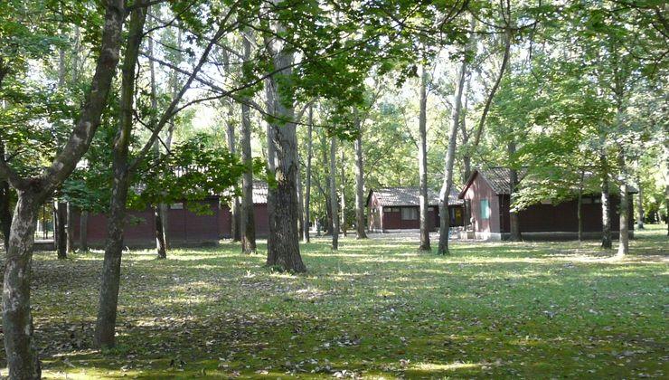 Edzőtábor, táborhely - Békés-Dánfok Üdülő és Tábor - Faházak