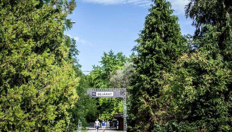 Edzőtábor, táborhely - Bodajk Ifjúsági Tábor