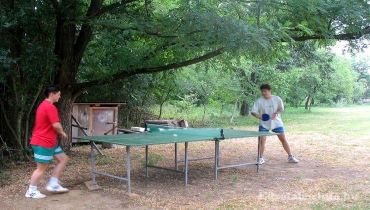 Edzőtábor, Őrimagyarósd Ifjúsági Tábor - pingpong