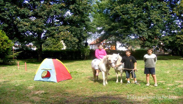 Edzőtábor - Tokaj Ifjúsági Tábor - pónilovaglás